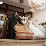 porumbei albi nunta cluj